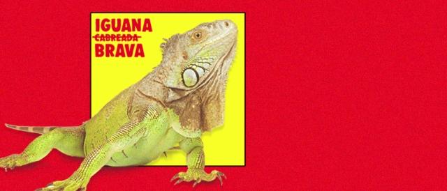 Iguana Brava